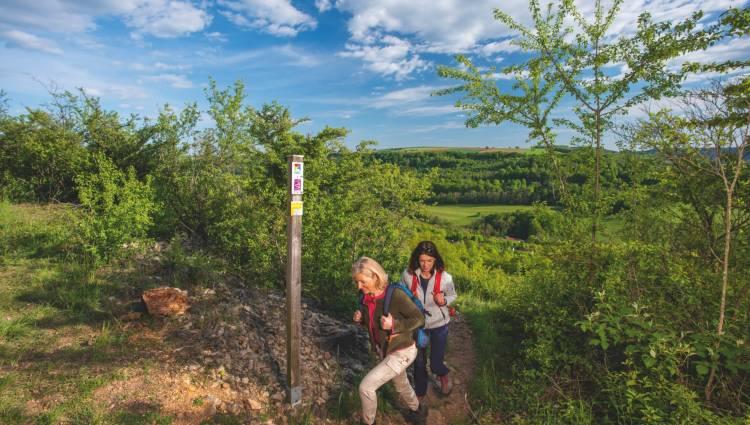 kpk922274 m3 trail