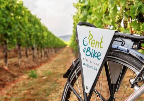 biking visit moselle luxembourg