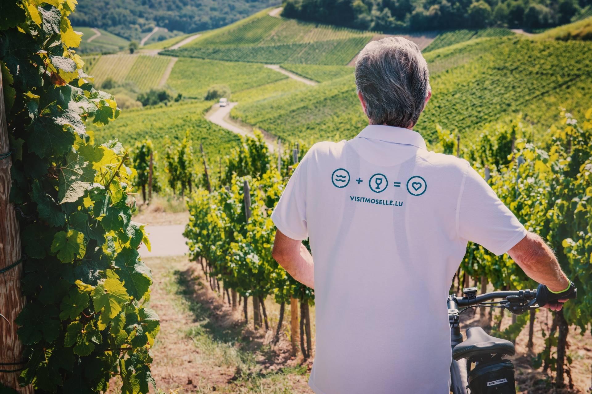 biking moselle region visit moselle luxembourg