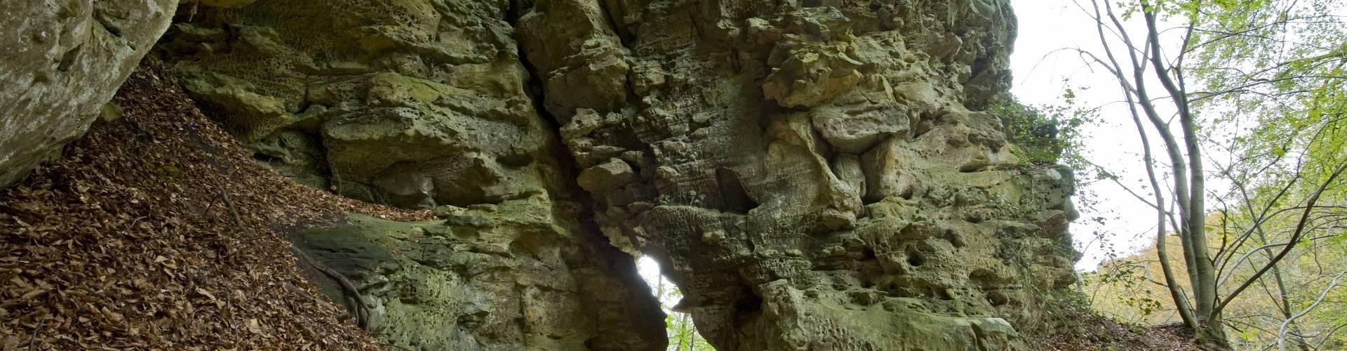 pierre haas n 6 hab0962