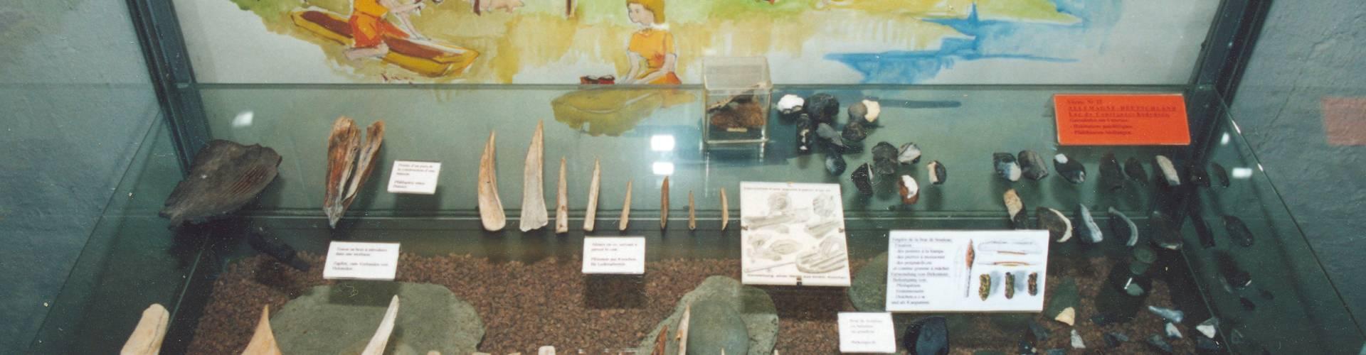 museum of prehistory echternach inside