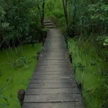 biodiversum nature reserve haff reimech