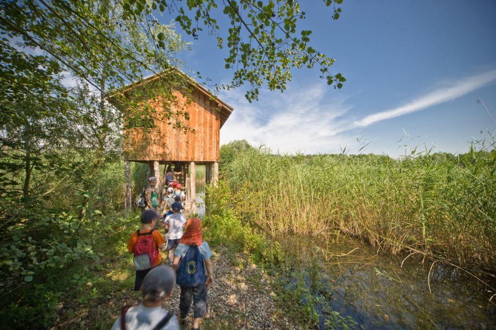 biodiversum - nature reserve haff reimech 02