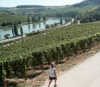 circular walk nature and wine discovery grevenmacher