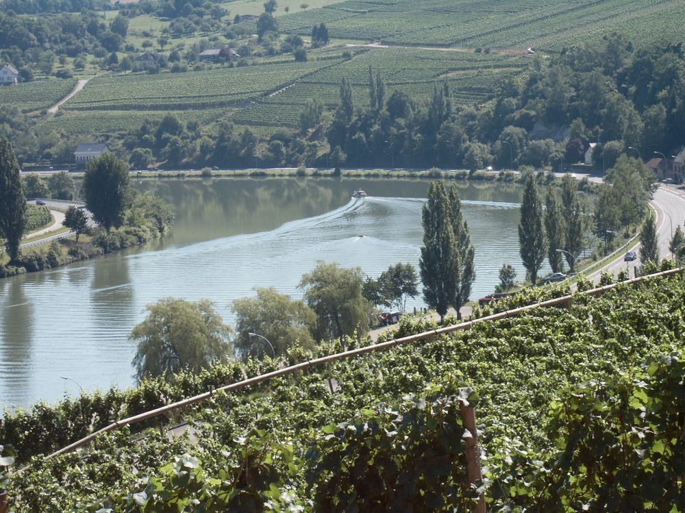 circuit pedestre nature and wine discovery grevenmacher 4