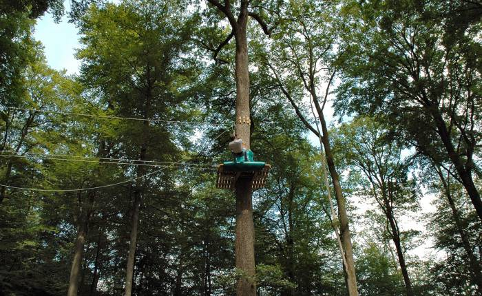 Adventure Park Indian Forest 8