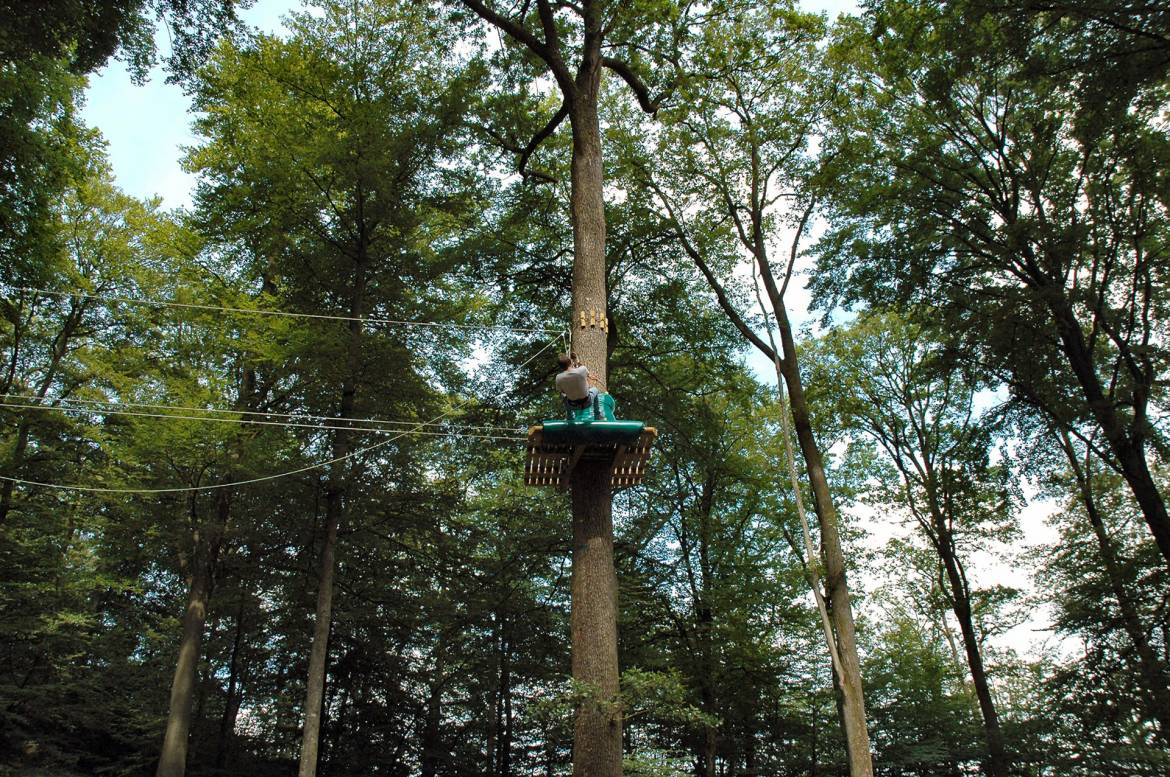 Zip Line Harness >> Adventure Park Tree Climber - Visit Luxembourg