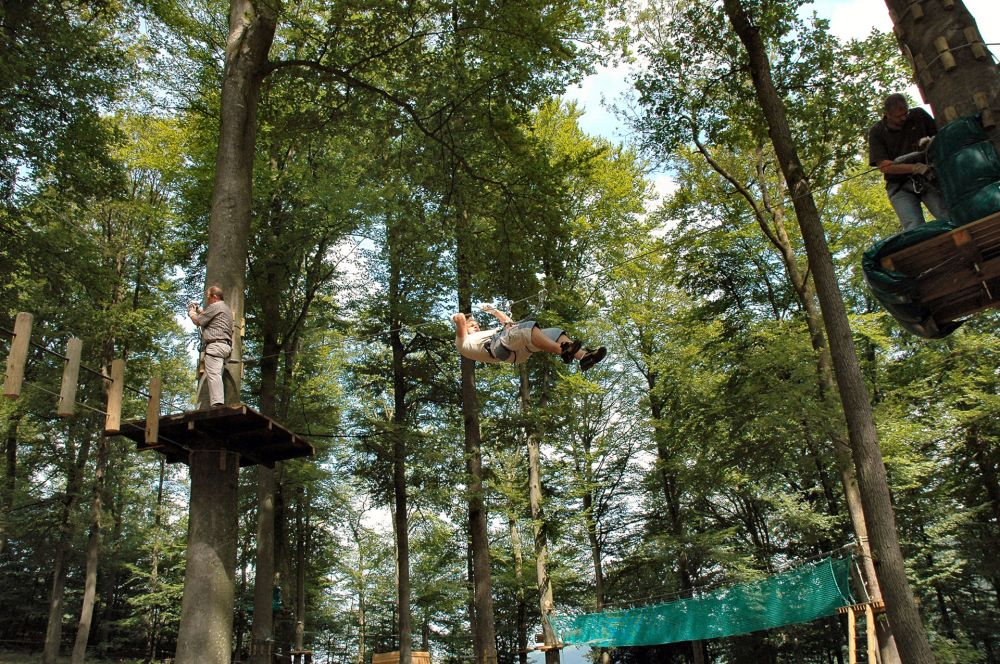 Adventure Park Tree Climber Visit Luxembourg