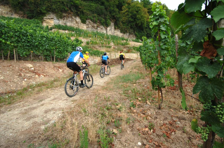 mtb trail wolmeldange
