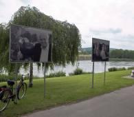 fahrradtour romerrunde schengen foto