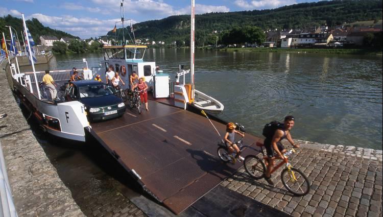 fahrradtour sauertalroute wasserbillig