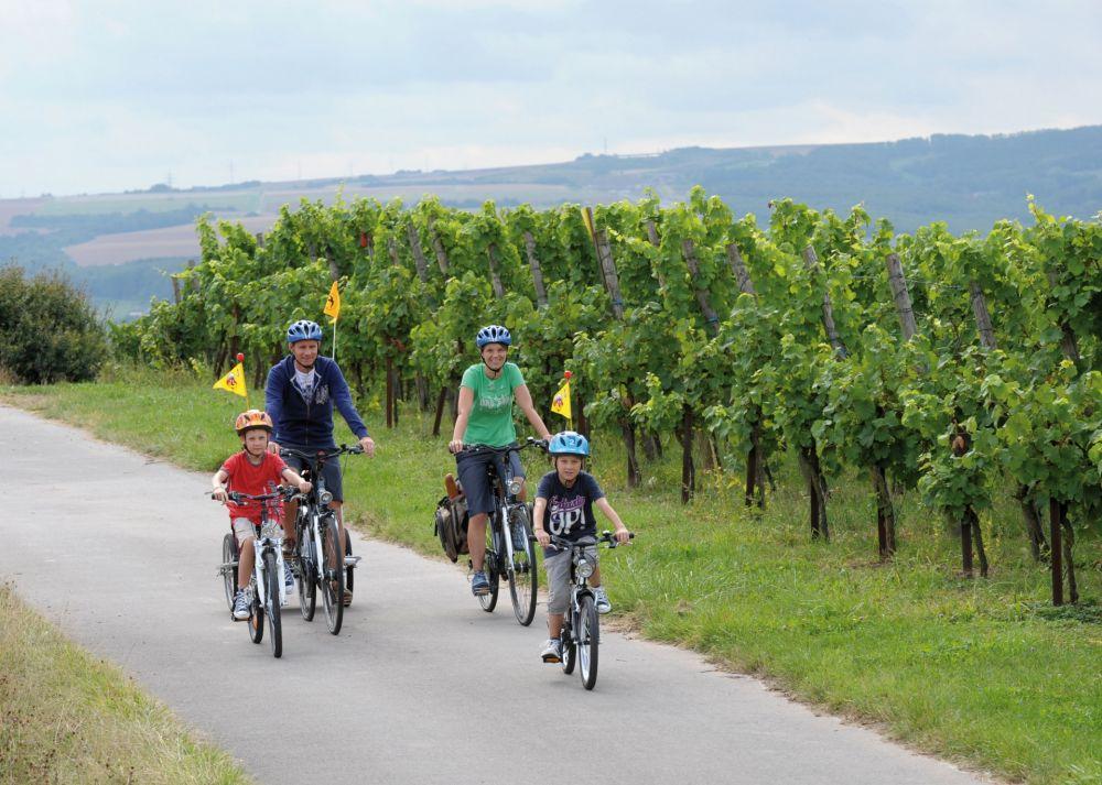 fahrradtour taler tour konz foto 2