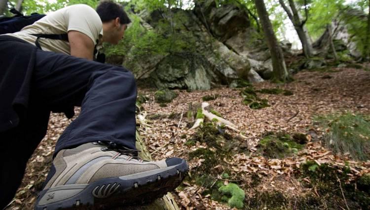 circular walk naturwanderpark delux felsenweg 3 photo