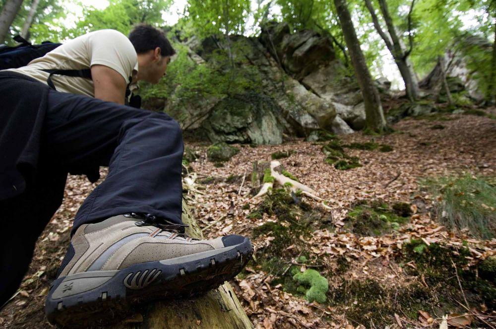 rundwanderroute naturwanderpark delux felsenweg 3 foto