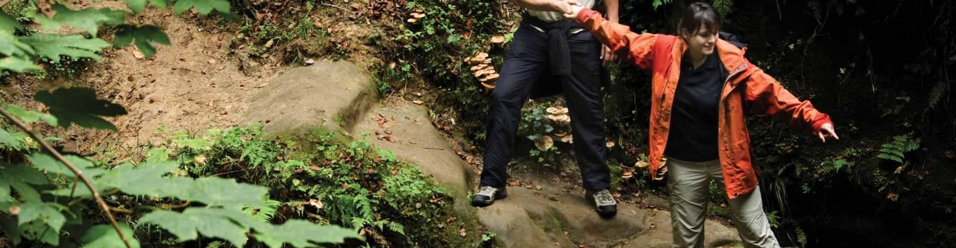 rondwandelroute naturwanderpark delux felsenweg 2 foto 1