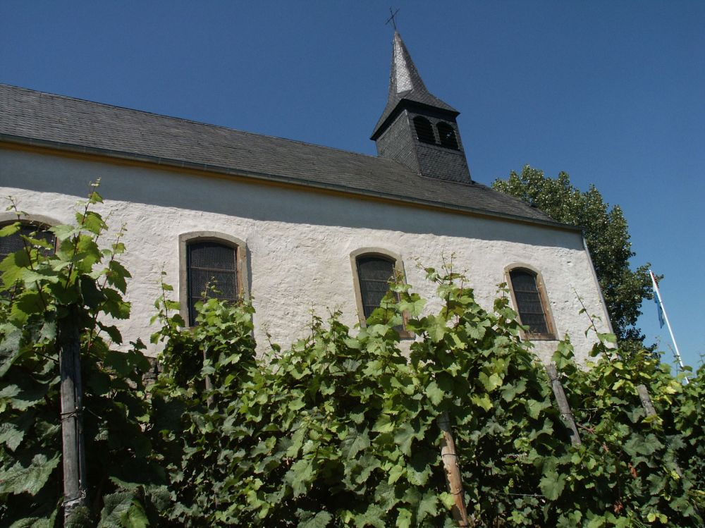 circular walk grevenmacher II photo 5