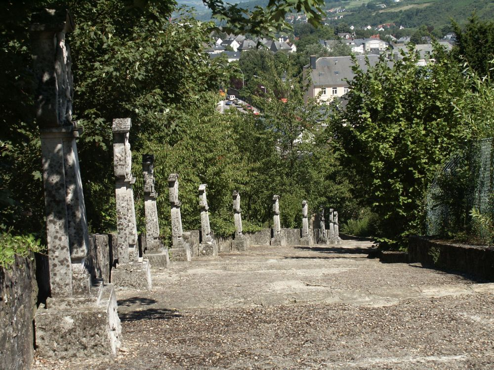 circular walk grevenmacher II photo 8