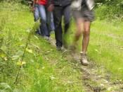 etappenwanderweg maurice cosyn foto