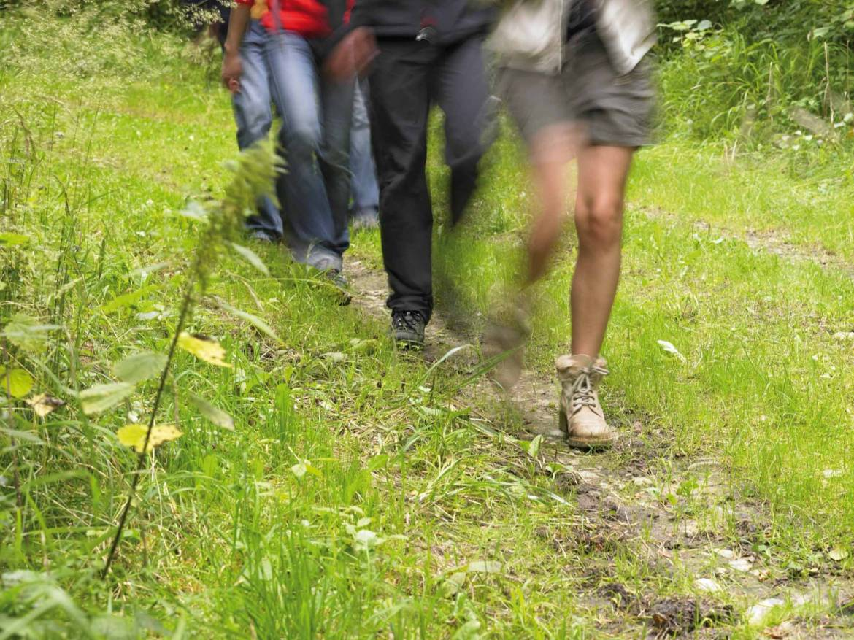 sentier pedestre en etapes maurice cosyn photo