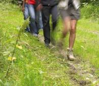 sentier pedestre en etapes our weiswampach photo