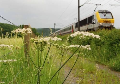 18 station to station walferdange dommeldange photo 2