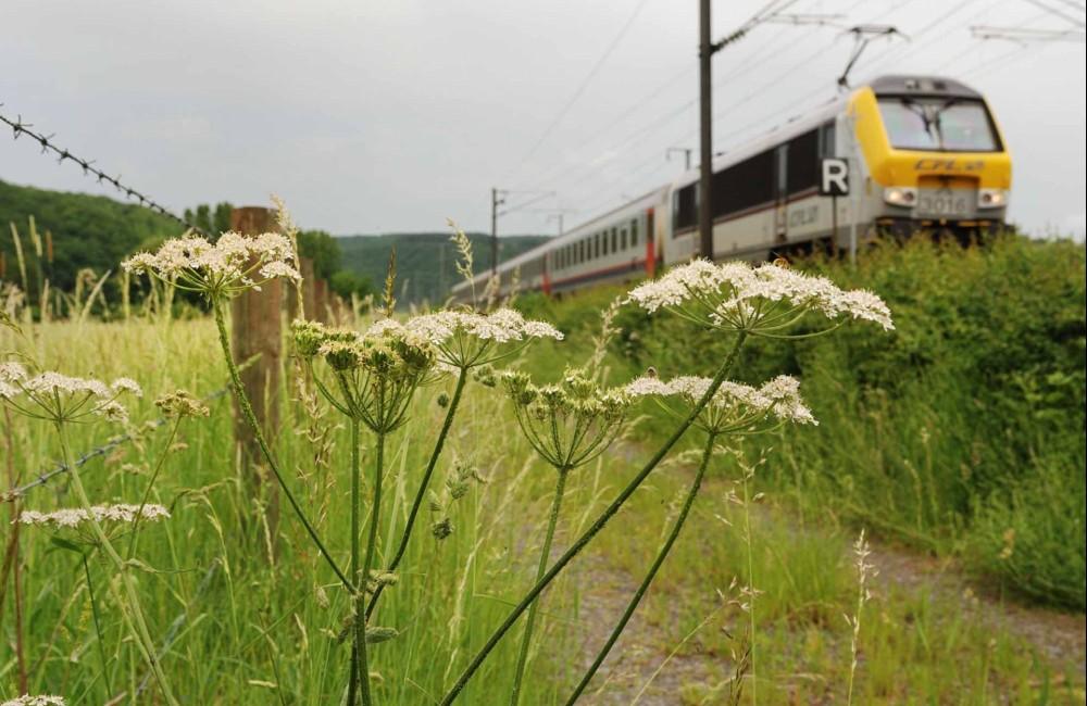 36 bahnhof zu bahnhof luxembourg sandweiler contern foto 2