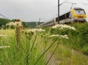 39 gare en gare wecker manternach photo 2