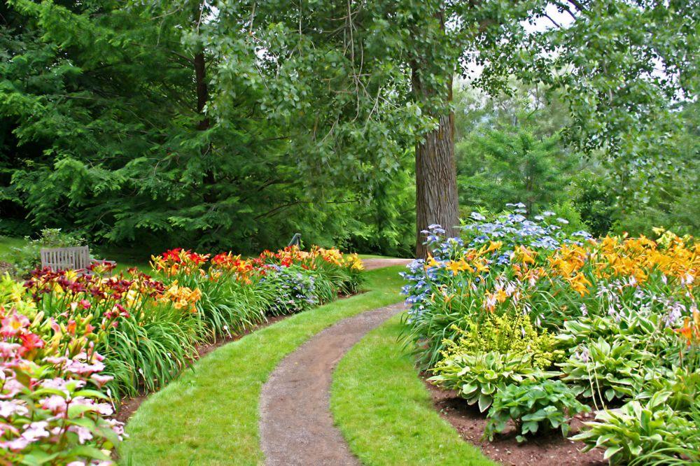 luxembourg kirchberg arboretum 01