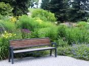 luxembourg kirchberg arboretum