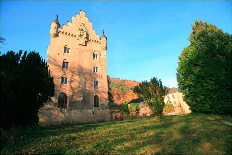 Schloss Schoenfels 2