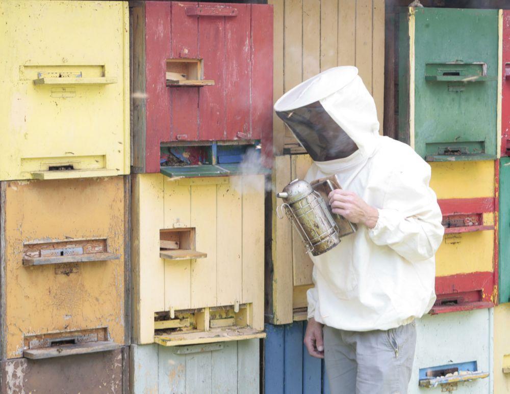 beo bauereninitiativ fir d eislek an den naturpark our beehive