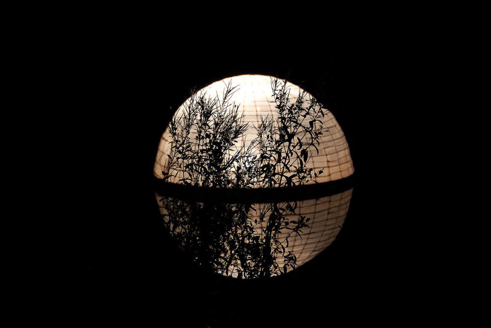 nuit des lampions wiltz 03