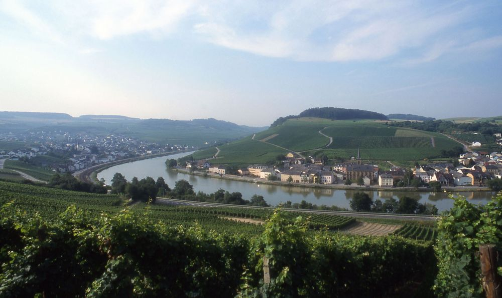 the moselle 04
