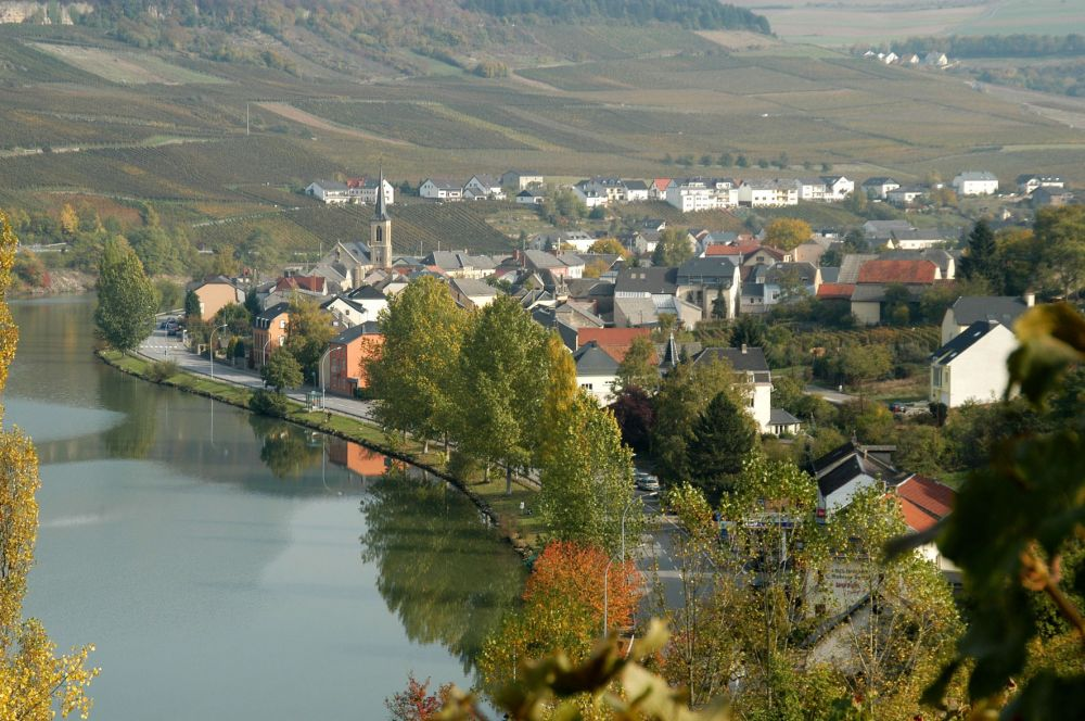 the moselle 07